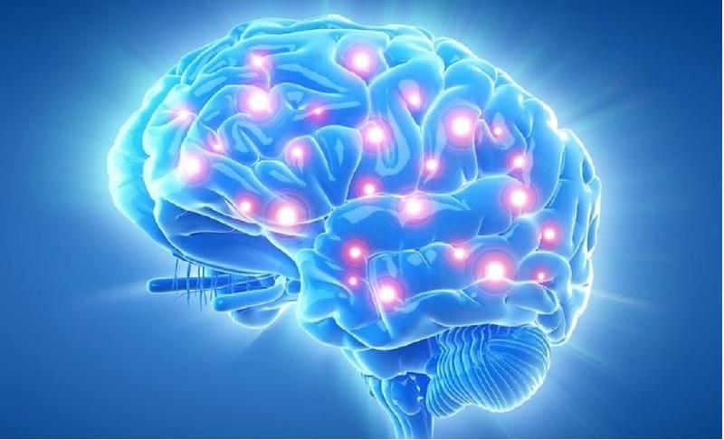 Cải thiện trí tuệ giúp bổ não với hàm lượng dầu cá cao gấp 2 lần so với liều lượng tiêu chuẩn