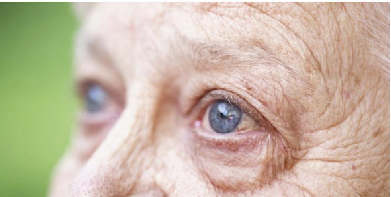 Viên uống nên được sử dụng theo liều dùng khuyến cáo của nhà sản xuất để giúp cải thiện chức năng cho mắt tốt hơn