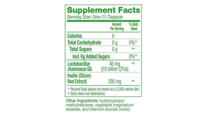 Thành phần chính có trong viên uống Probiotic Prebiotics