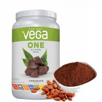 protein-vega-one-all-in-one-shake-chocolate-500-500-3