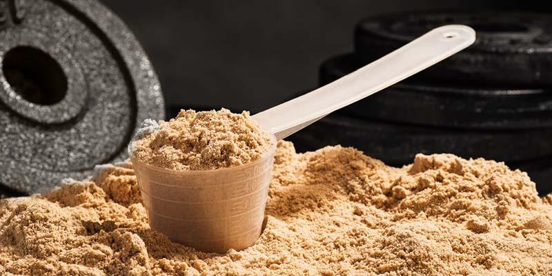 Whey protein được tìm thấy trong các sản phẩm có nguồn gốc từ sữa