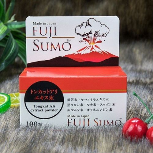 fuji-sumo-500-500-4