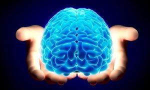 Thực phẩm chức năng bổ não