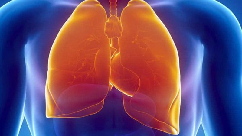 Thực phẩm chức năng bổ phổi là các loại viên uống bổ sung giúp bảo vệ lá phổi