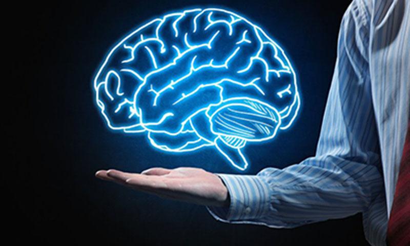 Thực phẩm chức năng tăng trí nhớ là các loại thuốc bổ cho não