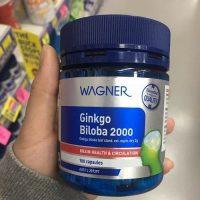 wagner-ginkgo-biloba-2000-500-500-2