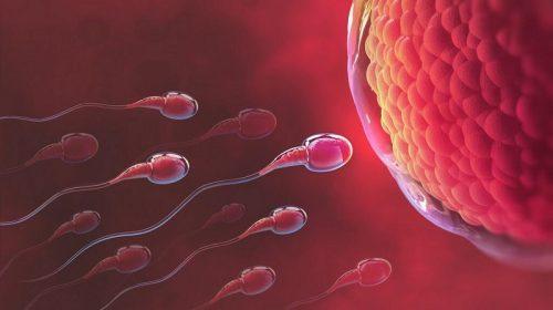 Xuất tinh sớm thì tinh trùng có yếu không là thắc mắc của rất nhiều nam giới bị xuất tinh sớm