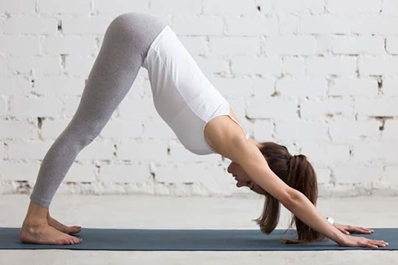 Tư thế chó úp mặt là một tư thế yoga cơ bản và vô cùng quen thuộc với các yogi