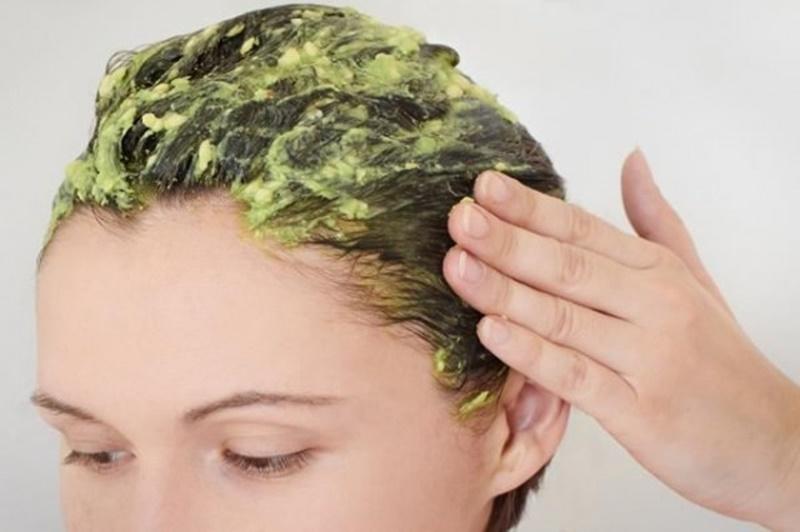 Cung cấp dưỡng chất cho tóc ngay tại nhà từ bơ
