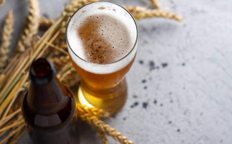 Thành phần của bia chứa hàm lượng protein lớn, hỗ trợ nuôi dưỡng mái tóc và giảm khô xơ