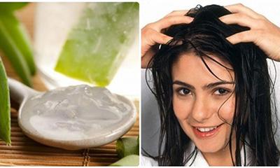 Chăm sóc tóc bằng nha đam