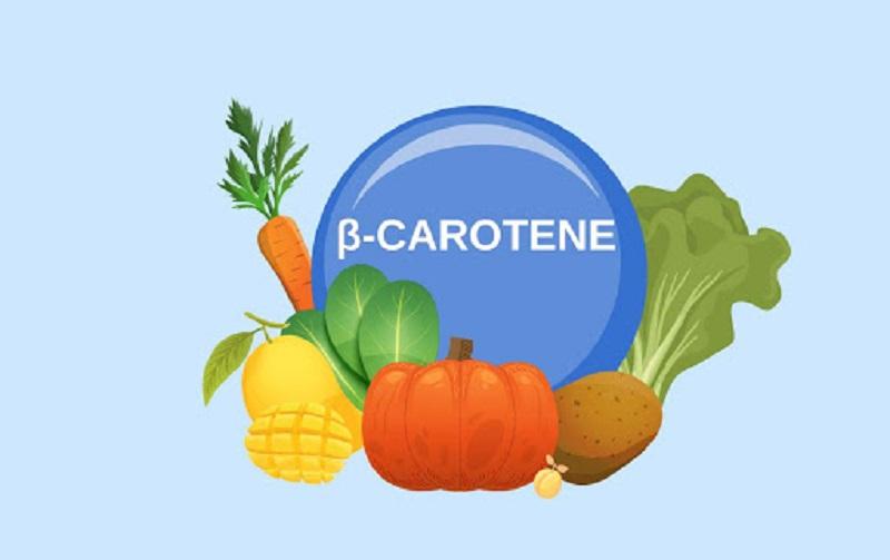Tiền chất của vitamin A chính là Beta Caroten