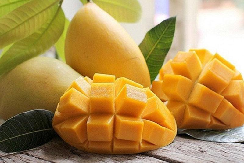 Quả xoài chín có vị ngọt, hơi chua nhẹ và chứa nhiều dưỡng chất tốt cho sức khỏe