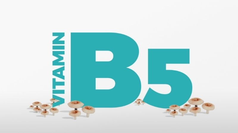 Tìm hiểu về vitamin B5