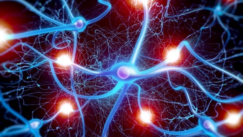 Hạn chế các tổn thương tại thần kinh