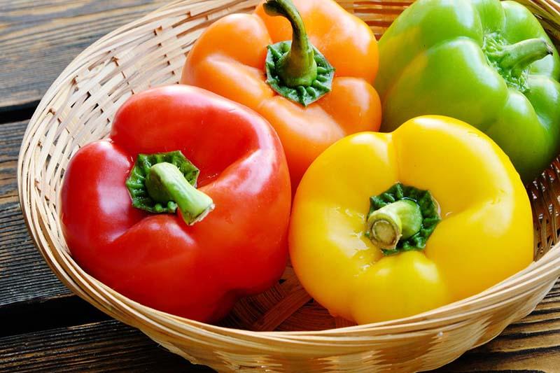 Ớt chuông hay trái ớt ngọt là một trong những thực phẩm chứa nhiều vitamin A nhất
