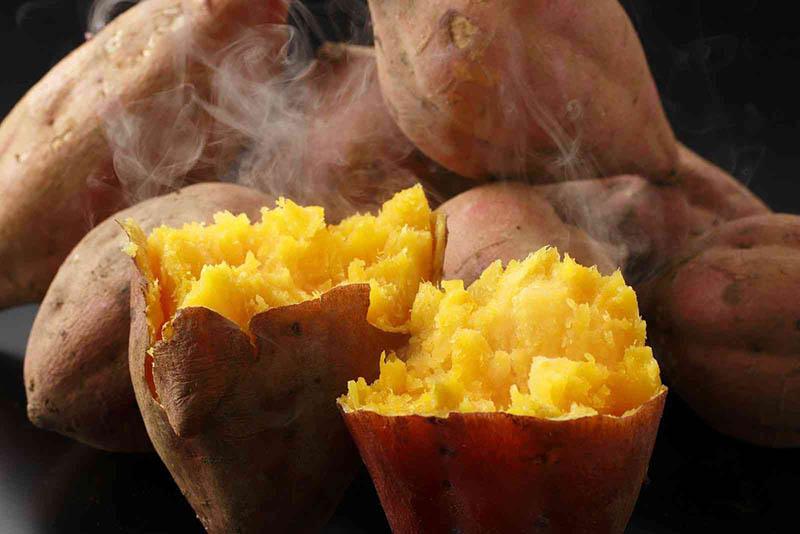Một củ khoai lang cỡ vừa có thể cung cấp đủ lượng vitamin A cần thiết mỗi ngày cho cơ thể