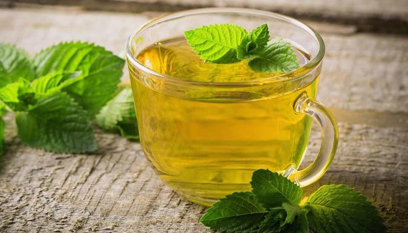 Uống trà bạc hà giúp mẹ bầu giảm bớt được các triệu chứng khó chịu trong người