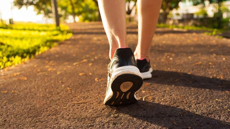 Đi bộ là phương pháp hỗ trợ điều trị thuyên giảm các triệu chứng của thoái hóa khớp gối