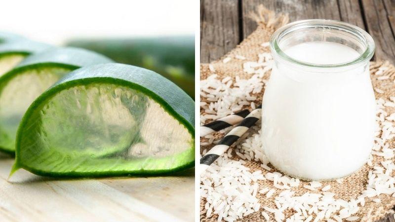 Công thức nha đam và nước vo gạo cải thiện tốt cho làn da