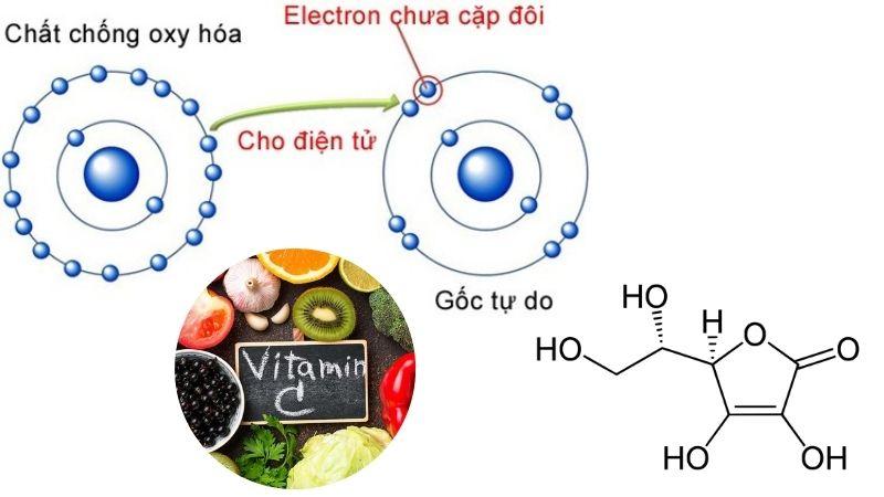 Cơ chế chống oxy hóa của vitamin C giúp vi chất này có thể chống lão hóa và một số bệnh lý nguy hiểm