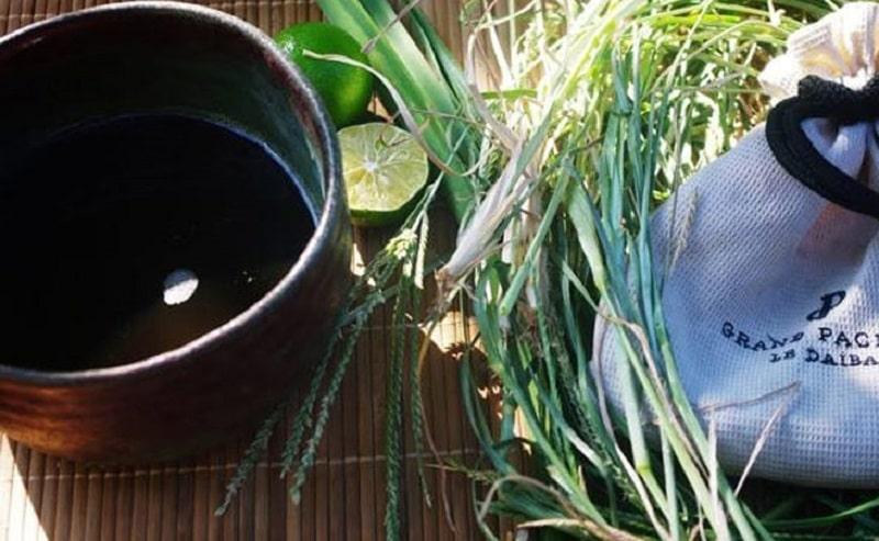 Sử dụng nước cốt cỏ mần trầu uống trực tiếp cũng có thể cải thiện các triệu chứng bệnh trĩ