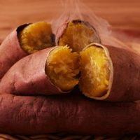 Đau dạ dày có nên ăn khoai lang không
