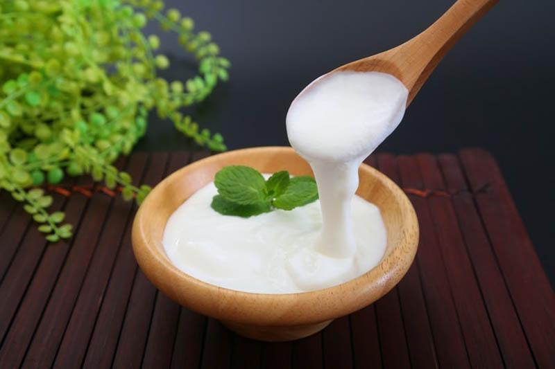 Người đau dạ dày ăn sữa chua cần lưu ý một số vấn đề