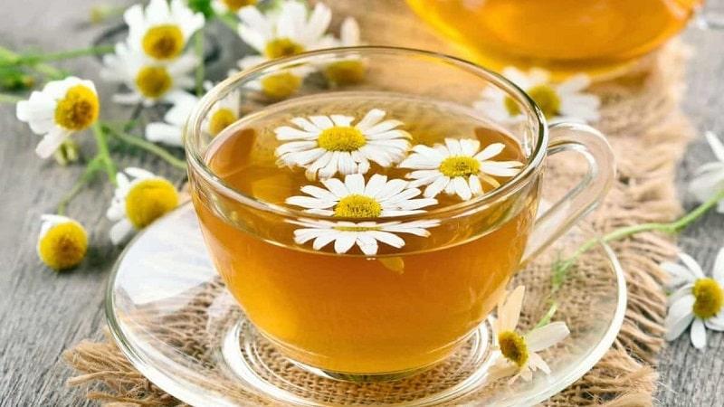Trà thảo mộc như trà hoa cúc có thể cải thiện tình trạng đau đầu mất ngủ
