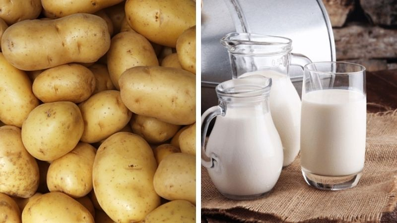 Mặt nạ trị mụn thâm bằng khoai tây và sữa tươi cũng rất tốt