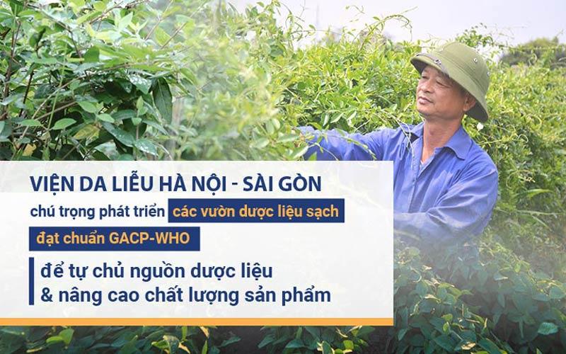 Viện Da liễu Hà Nội - Sài Gòn đẩy mạnh phát triển các vườn dược liệu sạch đạt chuẩn
