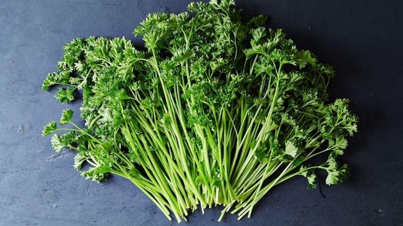 Rau mùi tây nên thường xuyên được dùng trong bữa ăn