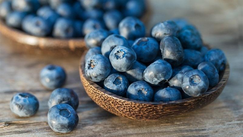 Việt quất là loại quả mọng, chứa nhiều vitamin và chất chống oxy hóa, rất tốt cho người có vấn đề tiêu hóa