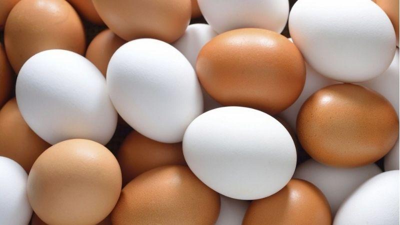 Trứng ức chế quá trình da làm liền sẹo