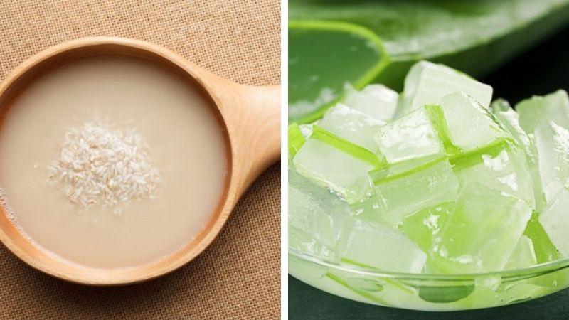 Bạn có thể dùng nước vo gạo với nha đam