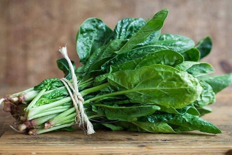 Rau cải bó xôi rất tốt cho người muốn giảm cân