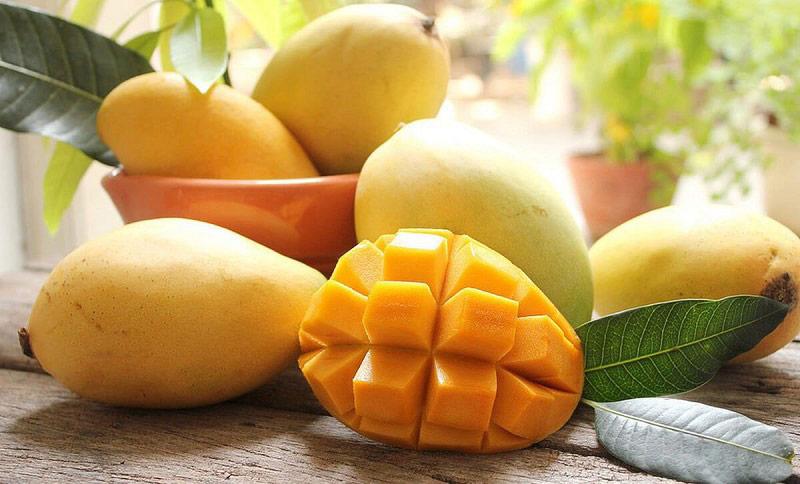 Xoài là loại trái cây bổ dưỡng, tốt cho sức khỏe