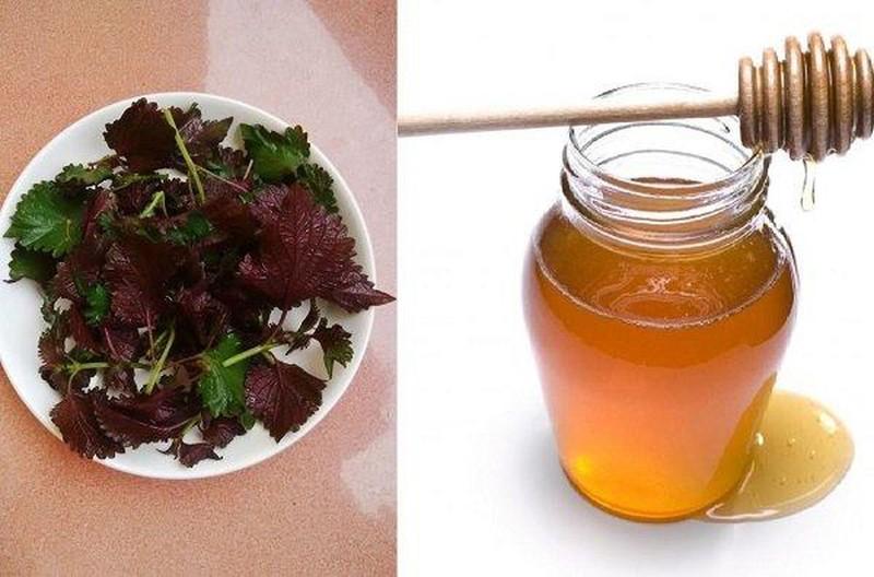 Lá tía tô và mật ong giúp làm sáng da hiệu quả