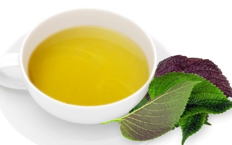 Uống trà lá tía tô là phương pháp làm đẹp da từ bên trong