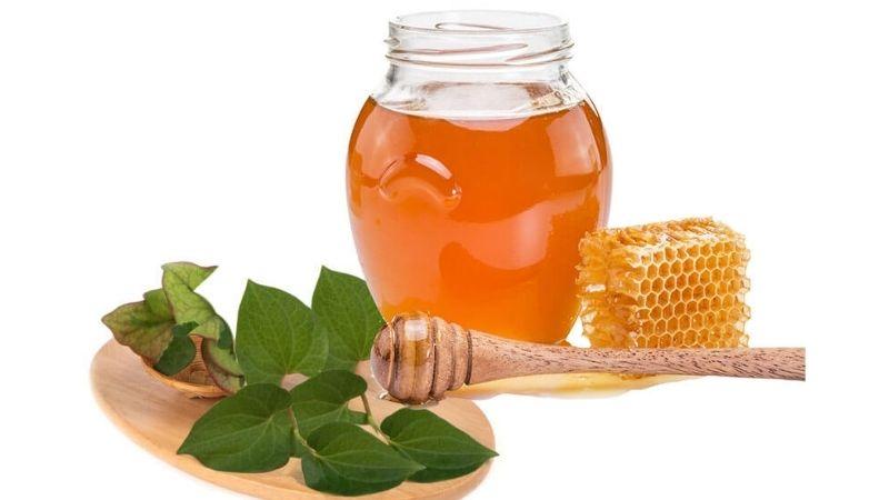 Cách trị nám bằng rau diếp cá với mật ong