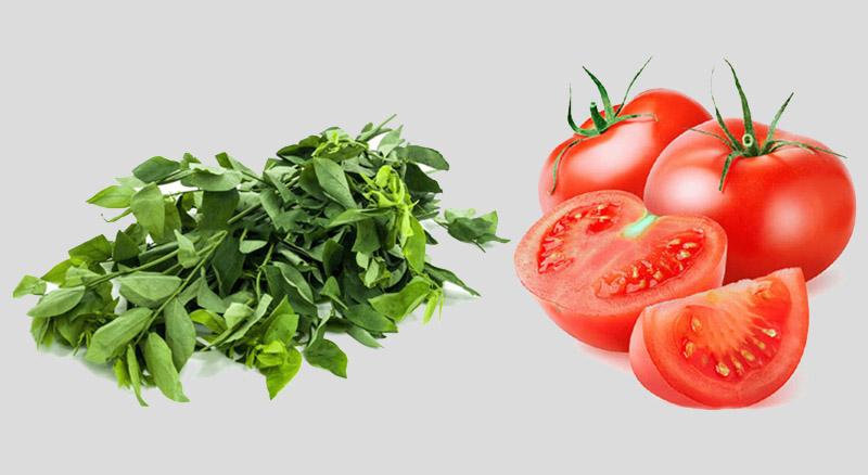 Nước ép rau ngót kết hợp với nước ép cà chua