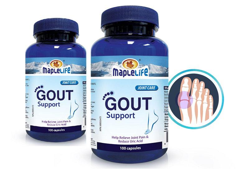 Viên uống giảm triệu chứng gout hiệu quả Gout SupportMaplelife